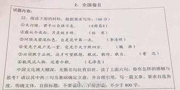 陕西作文2017高考题