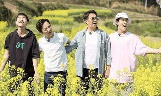 据悉,刘宪华此次退出《向往的生活》节目录制是为了自己的新歌曲.