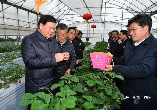 疫情防控新阶段,省委书记娄勤俭在镇江扬州检查调研