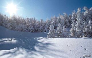 冬天的场景描写