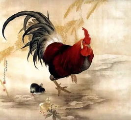 1993鸡人命运