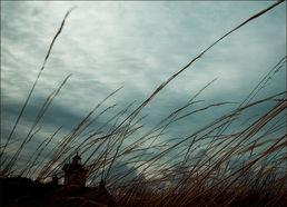 风的颜色 那抹淡蓝的晴