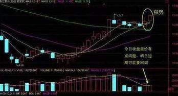 为什么有的股票趋势向上,看着没什么风险,回试时进入就被套了?
