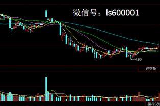 股票中国西电 是不是还得调整一下啊,买点是多少啊 东华实业买点多少啊