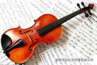 小提琴培养花费多少