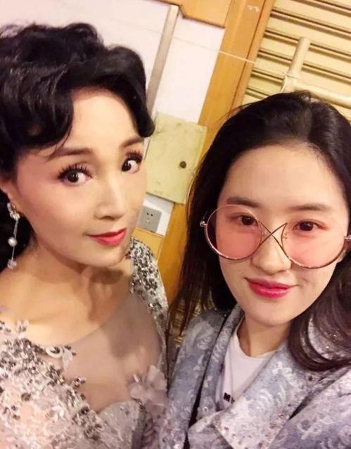 图为刘亦菲和小姨