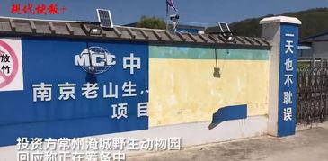 壹灵玲野生动物园开工3年有余,但建成遥遥无期2016年1月28日,南京灵玲野生动物王国项目正式签约,全国最大的野生动物王国落户老山.