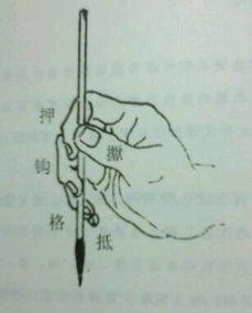 小指弯向无名指的命理