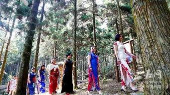 温州一群穿旗袍的美女照片曝光,太有气质