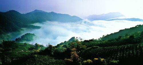 龙井村的湖