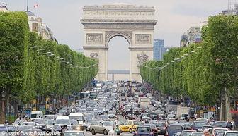 法国香榭丽舍大街变身 大自然 游客街头可见猪和牛马