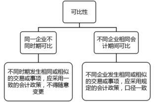 论实质重于形式在会计实务中的应用提纲