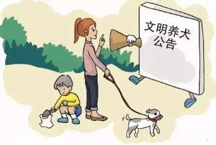 太原、银川实施养犬新政