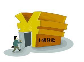 申请银行小额贷款(中国邮政储蓄银行 个)