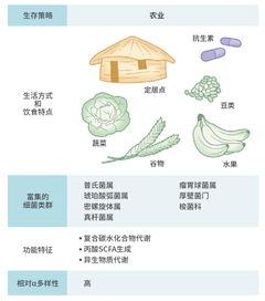 从肠治脑癌:台湾团队发30分文,突破给药难题   热心肠日报  知名经济纠纷律师
