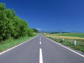 公路有哪些专业