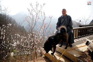 终南山隐士隐居20年 习拳练武 终南山寻隐 现代隐修的僧人