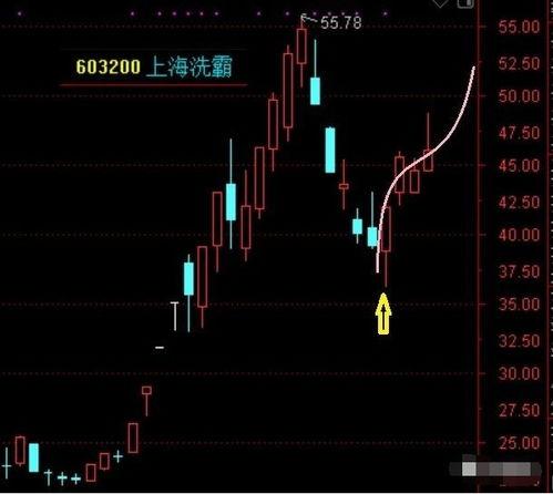 典型股票风险案例分析