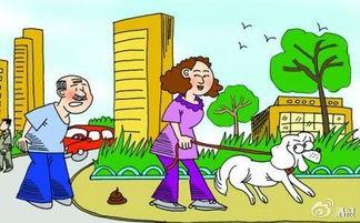 遛狗要牵绳,及时清理宠物粪便。
