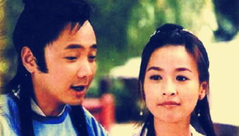 穿越时空的爱恋是由张庭,徐峥主演的