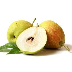 鲜之优果 新疆库尔勒香梨10斤