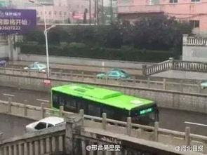河北邢台最牛公交司机暴雨中桥洞口掉头,路面积水严重