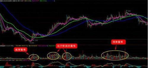 8字开头的股票是在什么市场上市的