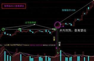 股票后面n是什么意思?