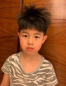 安吉之前是东北宋仲基,现在像刘昊然,其实剪的是道明寺发型