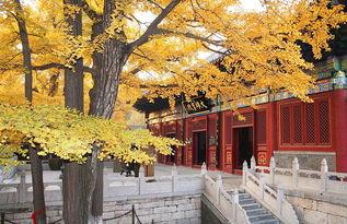 北京红螺寺有关的诗词