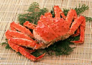 龙虾批发 龙虾价格