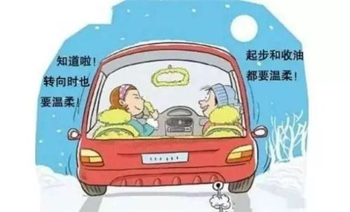 行车安全驾驶注意事项知识介绍图
