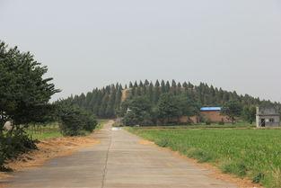 寻找陕西帝王陵 第二季 唐朝皇陵 9 献陵