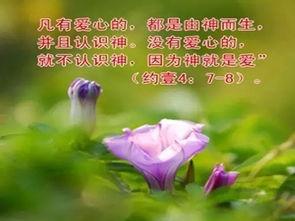 圣经关于爱的金句