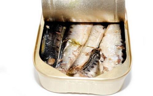 鲱鱼罐头可以钓鱼吗