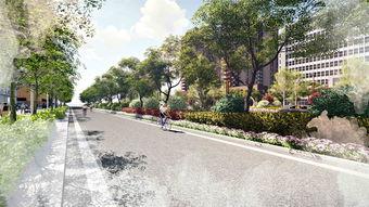 道路绿化效果图设计具有哪些功能性?