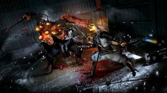 仁王 最后DLC公布,战国时代正式终结 游戏快讯