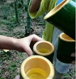 竹筒酒用过的筒可以养花吗