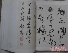 张旭光书法作品欣赏(书法家张旭光)