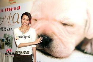 导盲犬小q所蕴含的生物知识