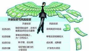 天使投资类项目