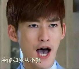蒋劲夫张翰陈晓王俊凯 盘点明星们的搞笑表情包