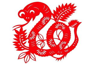 属蛇的巨蟹座今日运程