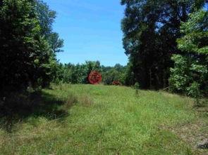 美国密西西比州亚祖城的房产USD 470,000 美国房产密西西比州亚祖城房产房价 居外网