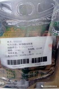 """""""上海方案""""可治愈最凶险白血病 一盒药仅290元全因这位老人"""