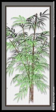 描写竹子的古典名句