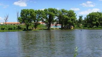 随着 四平青年 热播,二龙湖浩哥被人们熟悉 走进真实的二龙湖