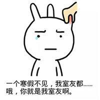 兔子表情图片大全 兔斯基QQ表情包 兔斯基动态表情 腾牛个性网