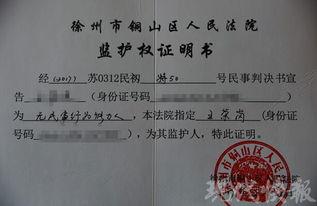 申请法院确认监护人申请书