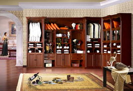 好莱客衣柜设计好学嘛
